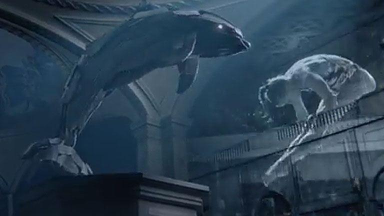 Itt a vizes-vb új imázsfilmje!