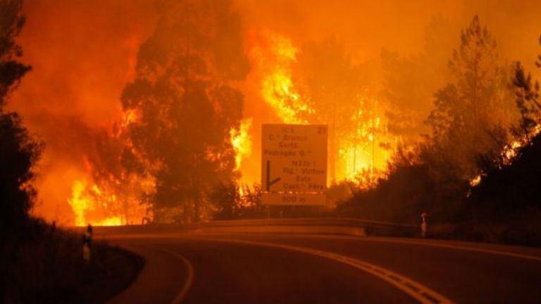 Már 62 halottja van a portugál erdőtűznek