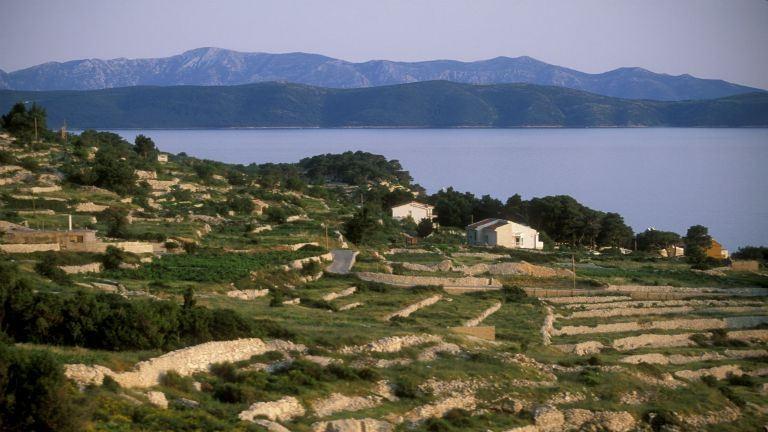Már a tengerparton is pusztít a horvát erdőtűz