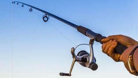 Élete harcsáját fogta ki a Dunából a horgász