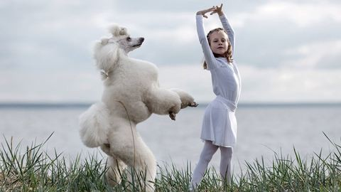 Cukiság: kutyáival együtt balettozik a kislány