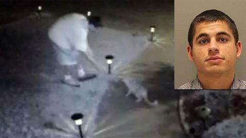 16 évet kapott a macska-sorozatgyilkos