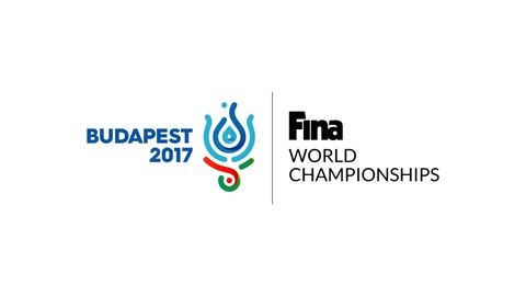 Vizes vb: Maglione maradt a FINA elnöke, Gyárfás továbbra is a vezetőségben