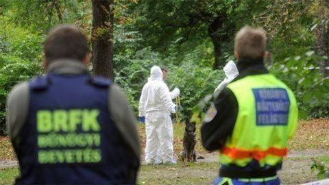 Hallatlan hiba a soroksári futónő gyilkosa utáni nyomozásban