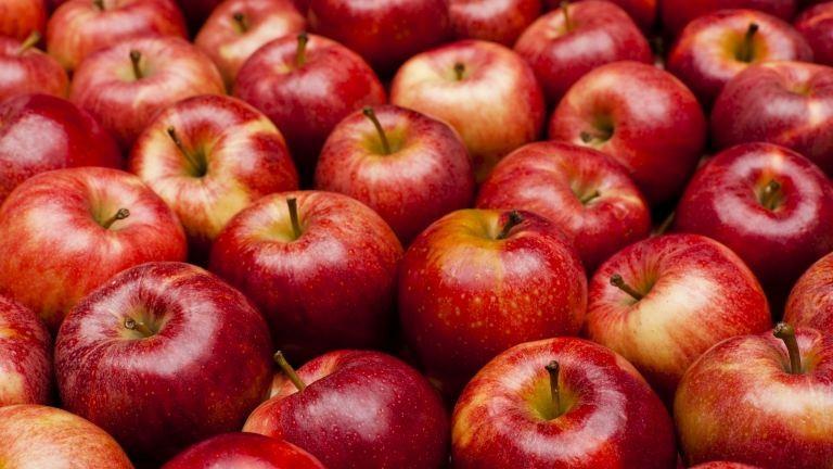 Nem lesz drágább az alma