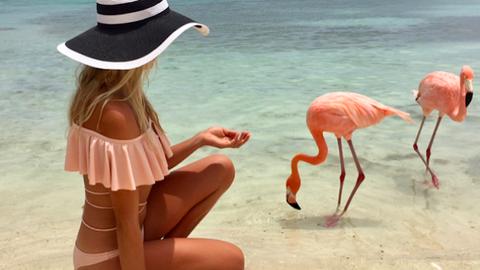 Flamingókkal lazíthatsz együtt ezen a gyönyörű strandon