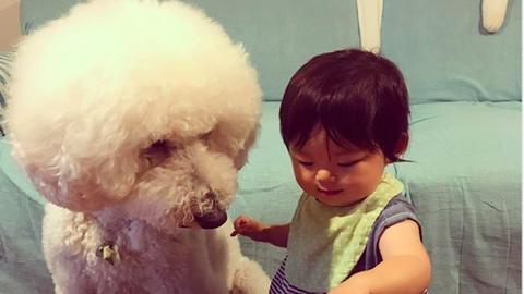 Elolvadsz a kisbabától és hatalmas pudlijától! – cuki fotók