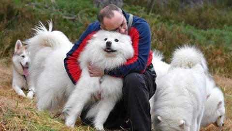 Ilyen kutyát válassz, ha allergiás vagy