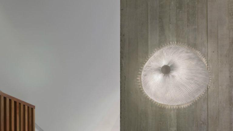 Ilyet még nem láttál: világító medúzák