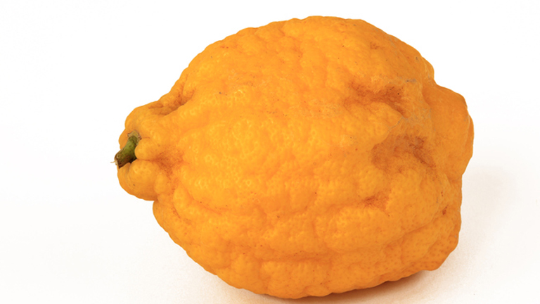 Frissíts citrusokkal kívül, belül!