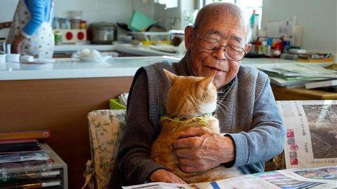 Egy vörös macska lett a 94 éves alzheimeres férfi legjobb barátja
