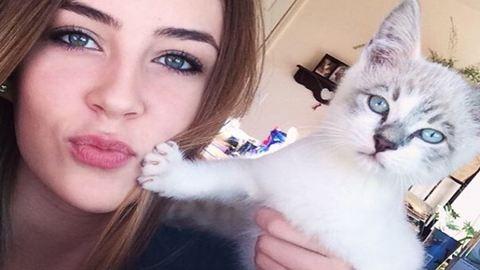 10 macska, aki egyáltalán nem akar szelfizni veled