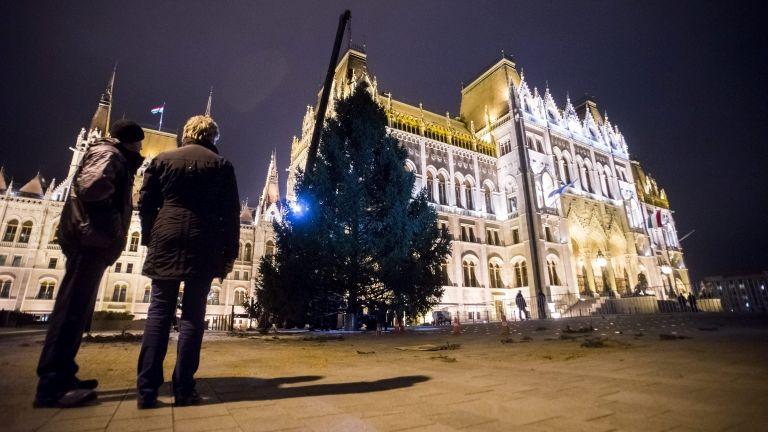Az ország karácsonyfája 2015-ben (MTI Fotó: Balogh Zoltán)
