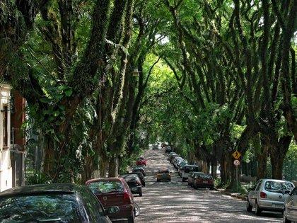 A világ legszebb utcája