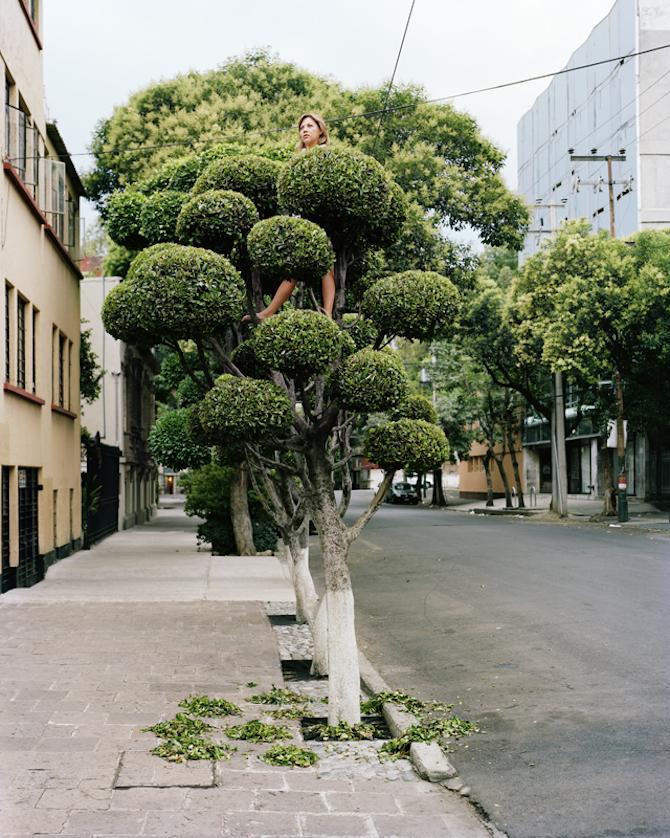 Emberek a fán