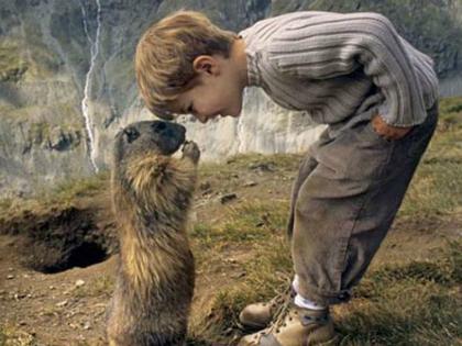 A 8 éves kisfiú a mormoták barátja