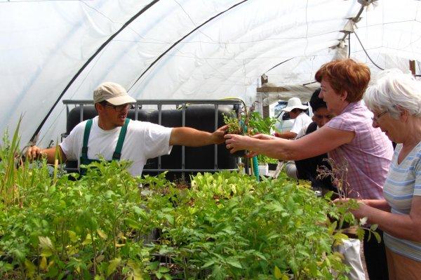Támogassuk a bio gazdaságokat