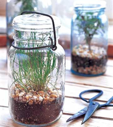Így kertészkedj a gyerekekkel a konyhában!