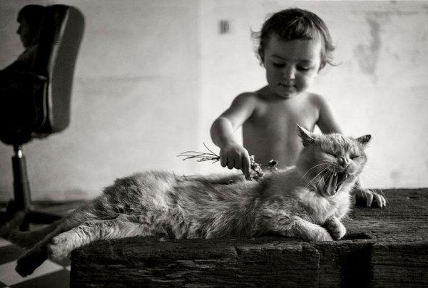 Félvadon gyereket nevelni - mágikus képek
