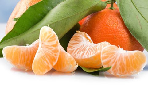 Szent-Györgyi Albert kálváriája a C-vitaminnal