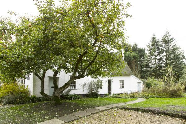 A tökéletes vidéki ház angliában, mesekerttel