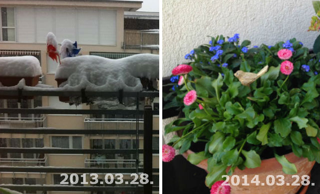 Itt a tavasz, indul a Nők Lapja Café kert!