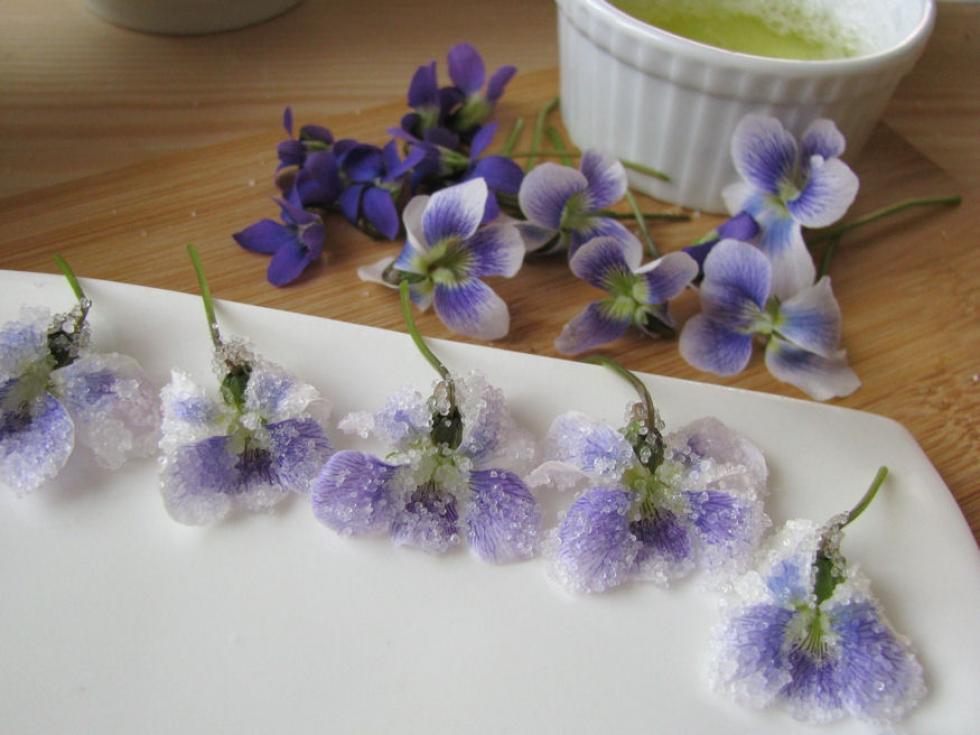 Ehető virág: fotókon az ibolya kandírozása
