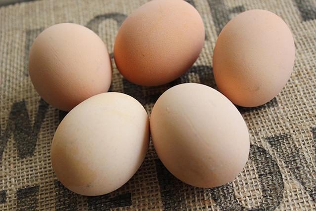 Csináld magad: tojásfestés kukucskáló kiscsirkékkel