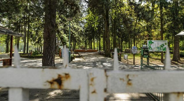 Bezárt az állatkert, Fotó: Czeglédi Zsolt