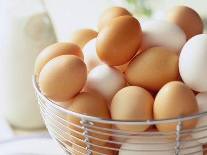 Boldog tyúkok, egészséges tojás