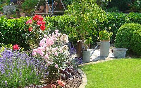 Kattintsunk a kertünk egészségére!
