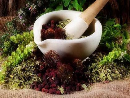 Fogyókúrázz gyógynövényekkel!