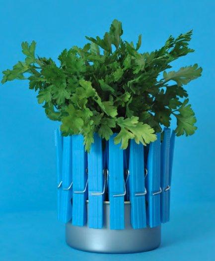 Így lesz a konzervdobozból virágtartó