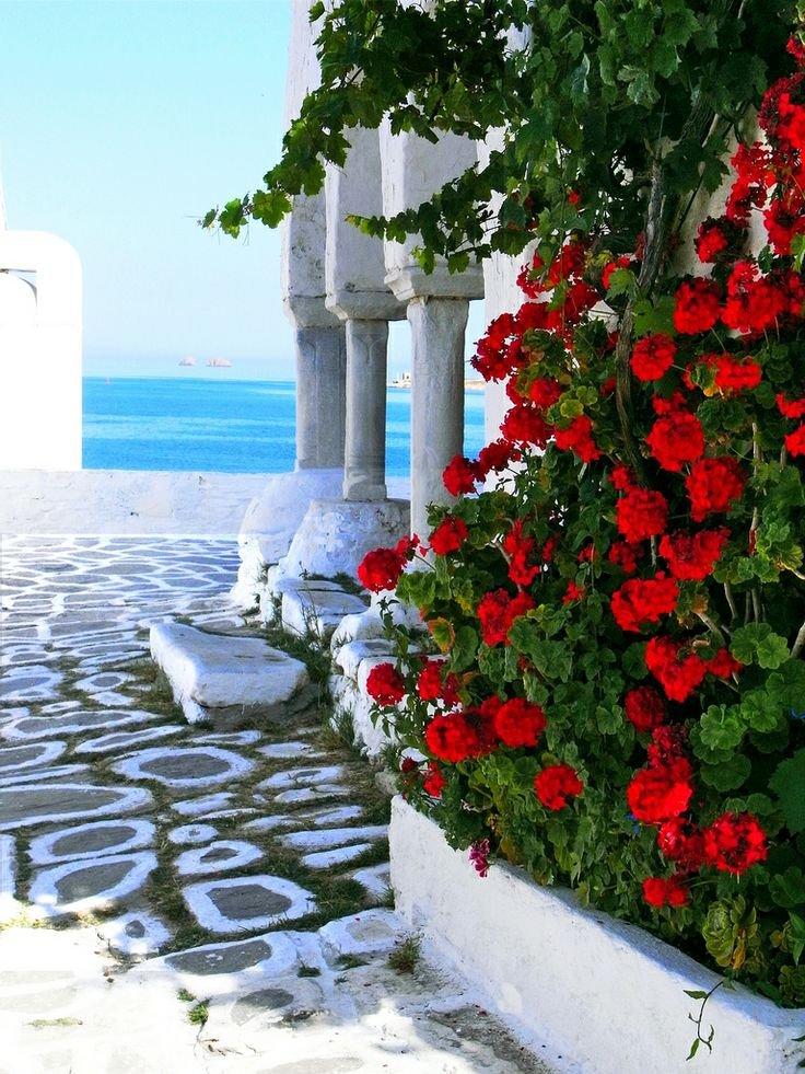 Így virágzik Görögország - látványos fotók
