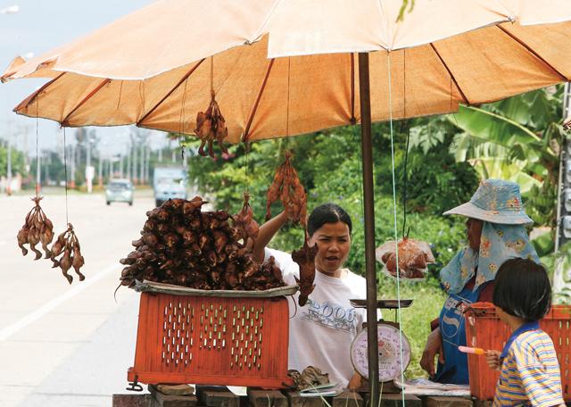 A thaiföldi kánikulában aszalódó madárkák és patkányok nem ajánlottak a kényes gyomrúaknak