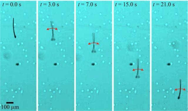 Úgy mozognak, akár az igaziak - Forrás: livescience.com