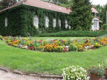 QR-kóddal a vácrátóti botanikus kertben