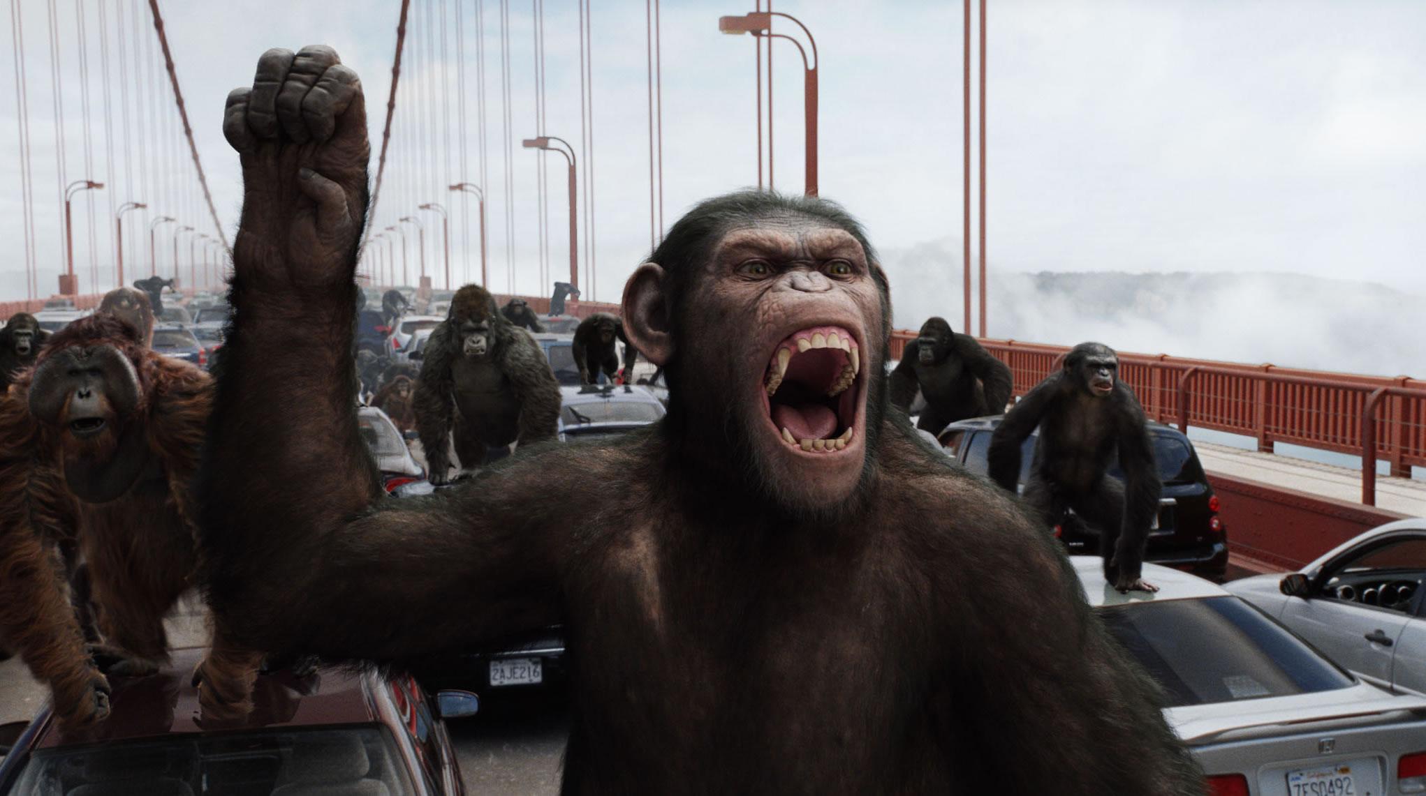 Hollywood tíz legnagyobb majma