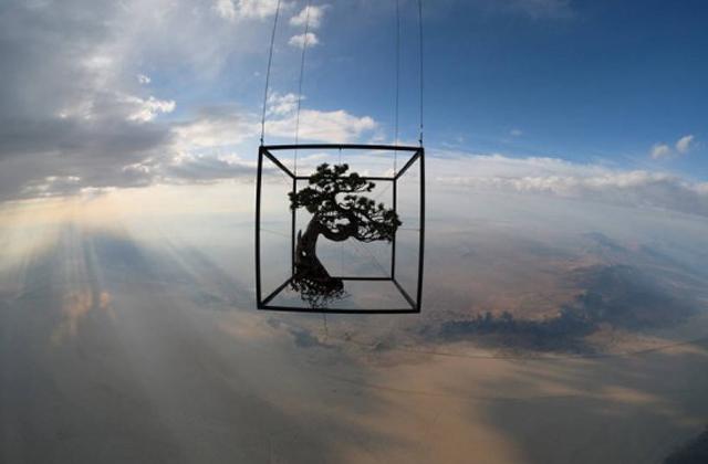 Így néznek ki a növények az űrben - képek