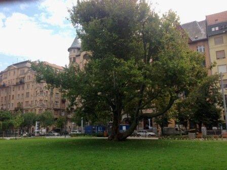 A legmenőbb titkos játszótér Budapesten