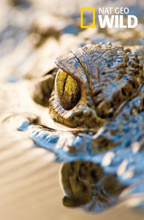 10 elképesztő fotó a National Geographic Instagram oldaláról