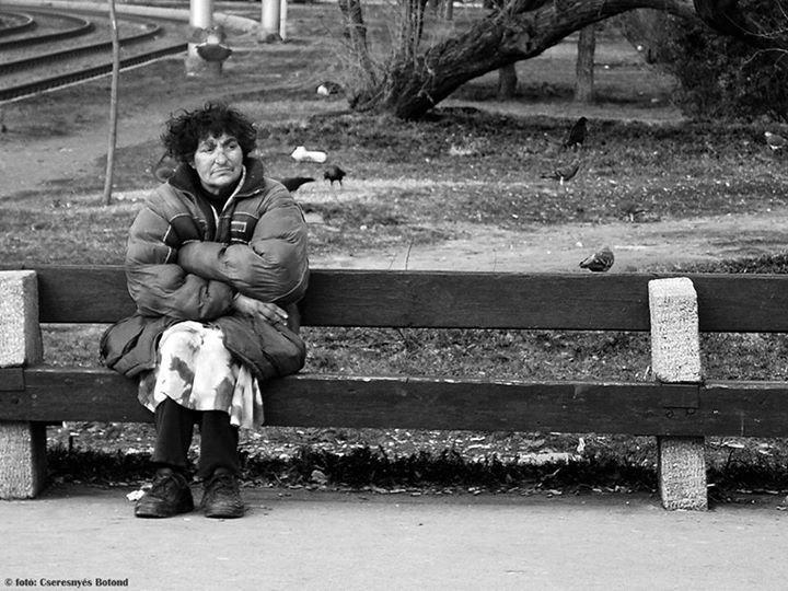 Emberségből jeles - történet egy hajléktalan néniről