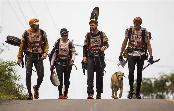 Kóbor kutyus csatlakozott az extrém csapathoz és végigkísérte útjukat - megható történet