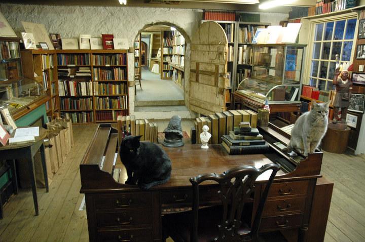 Csodás könyvesboltok, ahol szívesen vásárolnánk