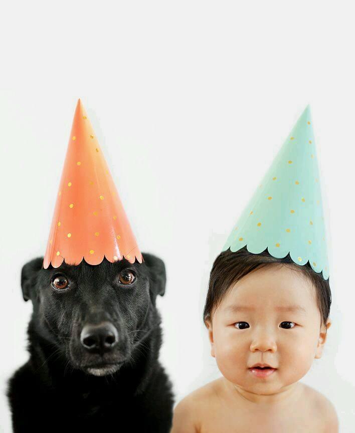 Cuki képeket készített a fotós kisfiáról és kutyájáról