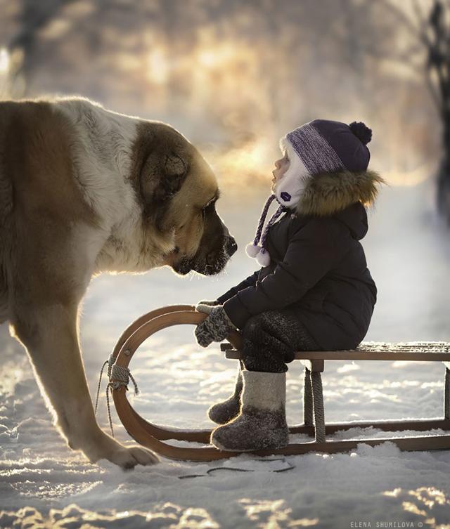 Csodaszép fotókat készít a gyerekeiről és az állataikról egy anyuka - fotó