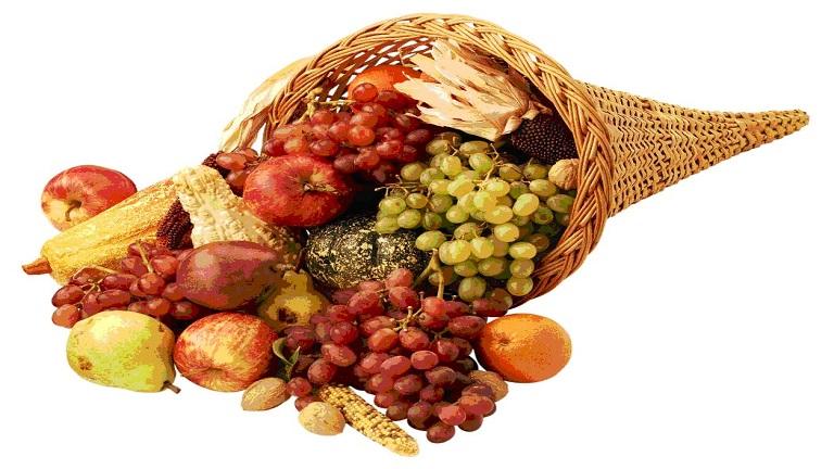 fruktózmentes diéta