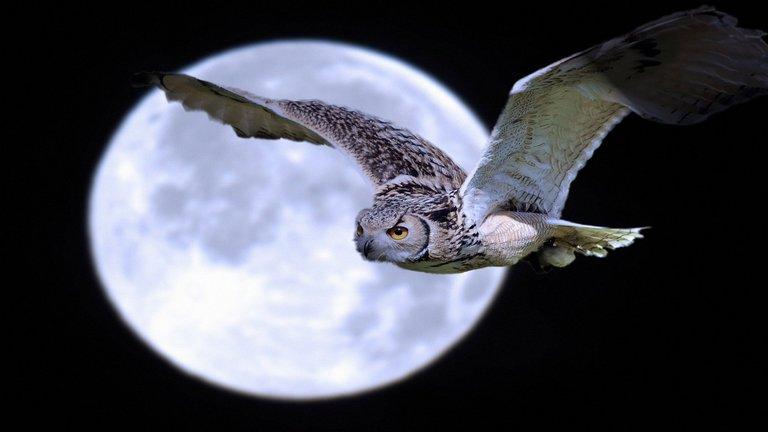 Heti holdnaptár: készülj a hullámvasútra!