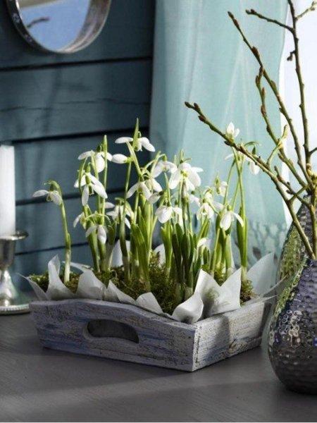 10+1 tavaszi kép, ami szebbé teszi a napodat