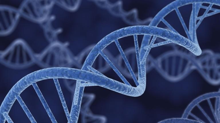 genetikai rák hajlam